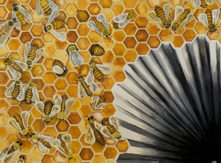 Sudden Hive Collapse Disorder is a relatively new affliction that has been hurting bees. This art piece is a play on words. I aimed to create an optical illusion to show a sudden collapse of the hive. Scientists do not know what causes whole hives to suddenly die but there is a speculation global warming or pesticides may have a hand in the problem.